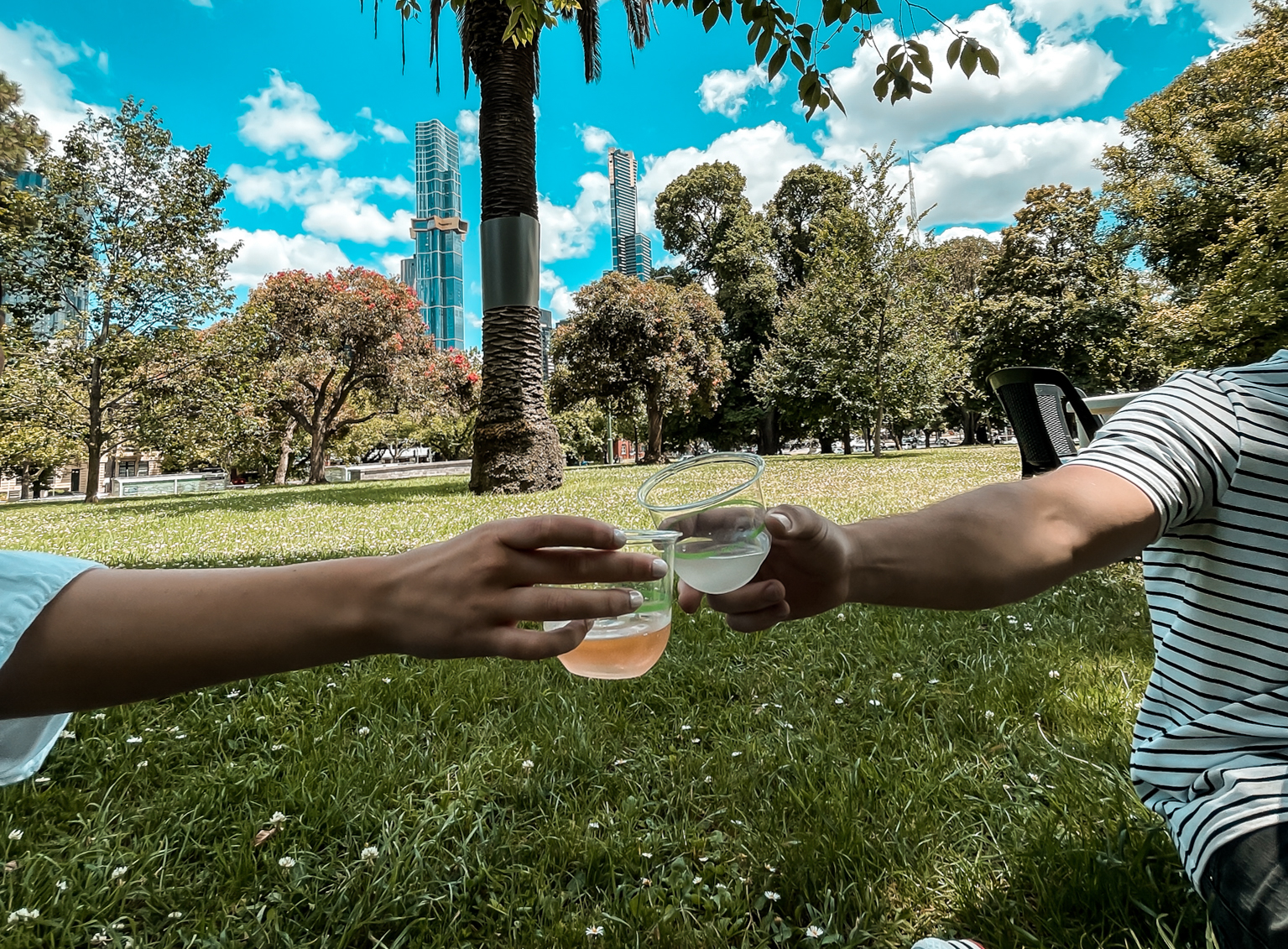 Drinks in the park